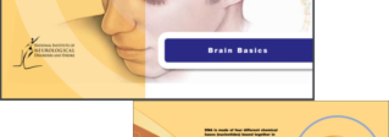 A screenshot of an e-book.